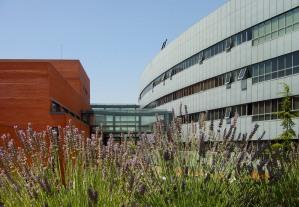 Universidades En España Universidad Autónoma De Madrid En Madrid Estudiar En España Studyinspain Info